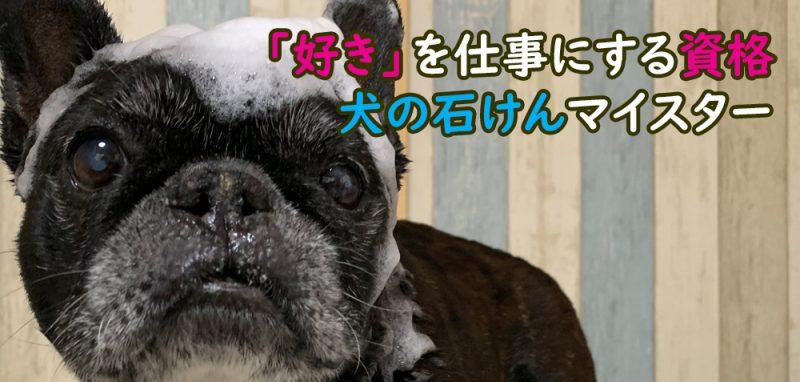 犬の石けんマイスター